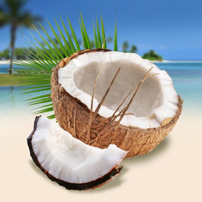 coconuts on the beach, summer, beach-4868864.jpg